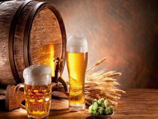 Теплое пиво от горла как альтернатива медикаментозному лечению