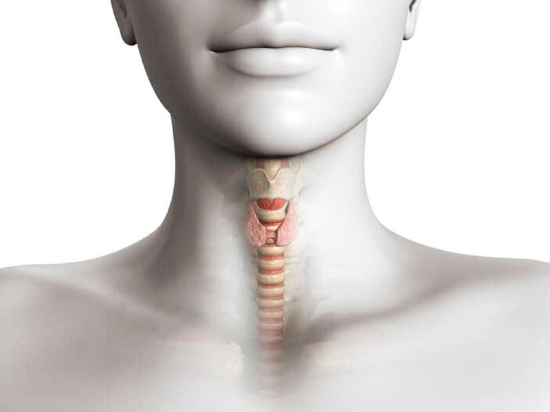 Комок в горле: причины и лечение неприятных ощущений в горле