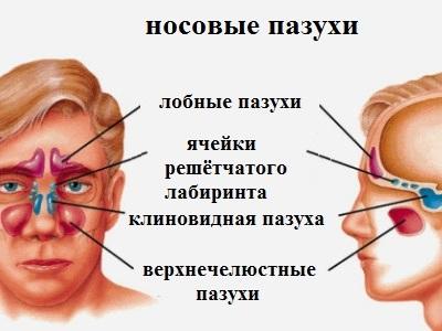Ендоскопия киста в носовых пазухах лечение