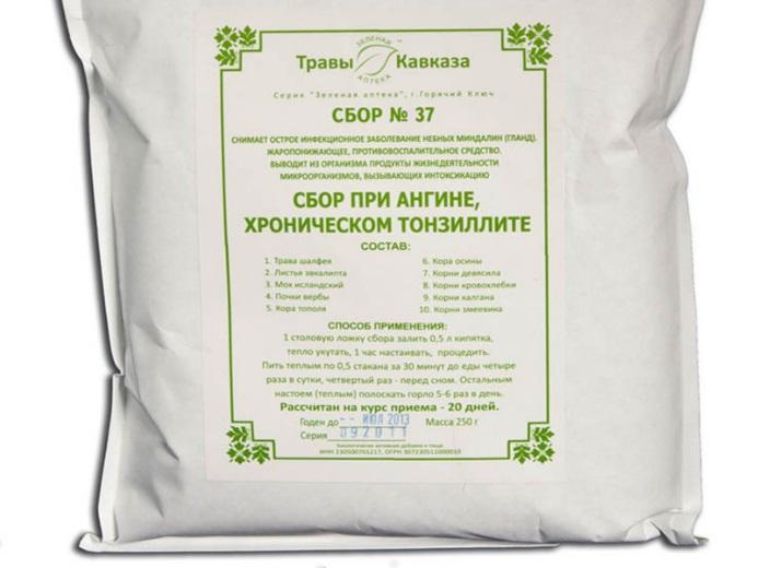 Сбор №37 от тонзиллита: эффективность использования от ангины, состав средства